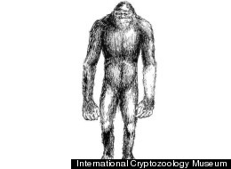 Scientists '95 Percent' Certain Last Month They'd Found Evidence of a Yeti, Now . . . Not So Much
