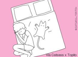 10 posiciones para dormir que tú y tu gato conocen muy bien