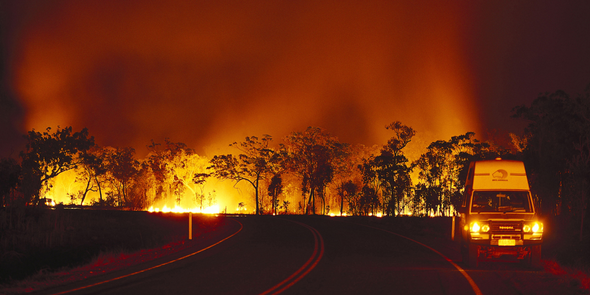 bushfire - photo #14