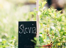 Stevia - so gesund kann Süßes sein