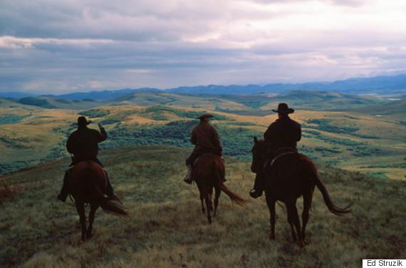 alberta ranchers