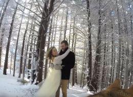 Un couple fait filmer son mariage par son chien (VIDÉO)