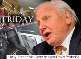 David Attenborough Narrates Black Friday