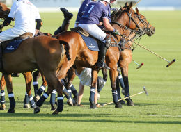Prince Harry Falls From Horse Twice In Polo Match