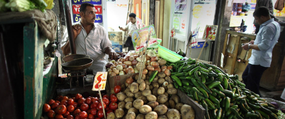EGYPT VEGETABLES