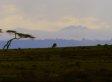 Watch The New Climate Change Film From Oscar-Winner Charles Ferguson