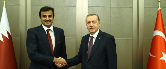 ERDOGAN AND TAMIM