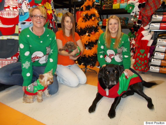 christmas ugly sweater dogs
