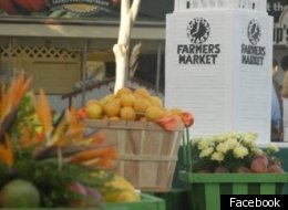 Fall Harvest Festivals