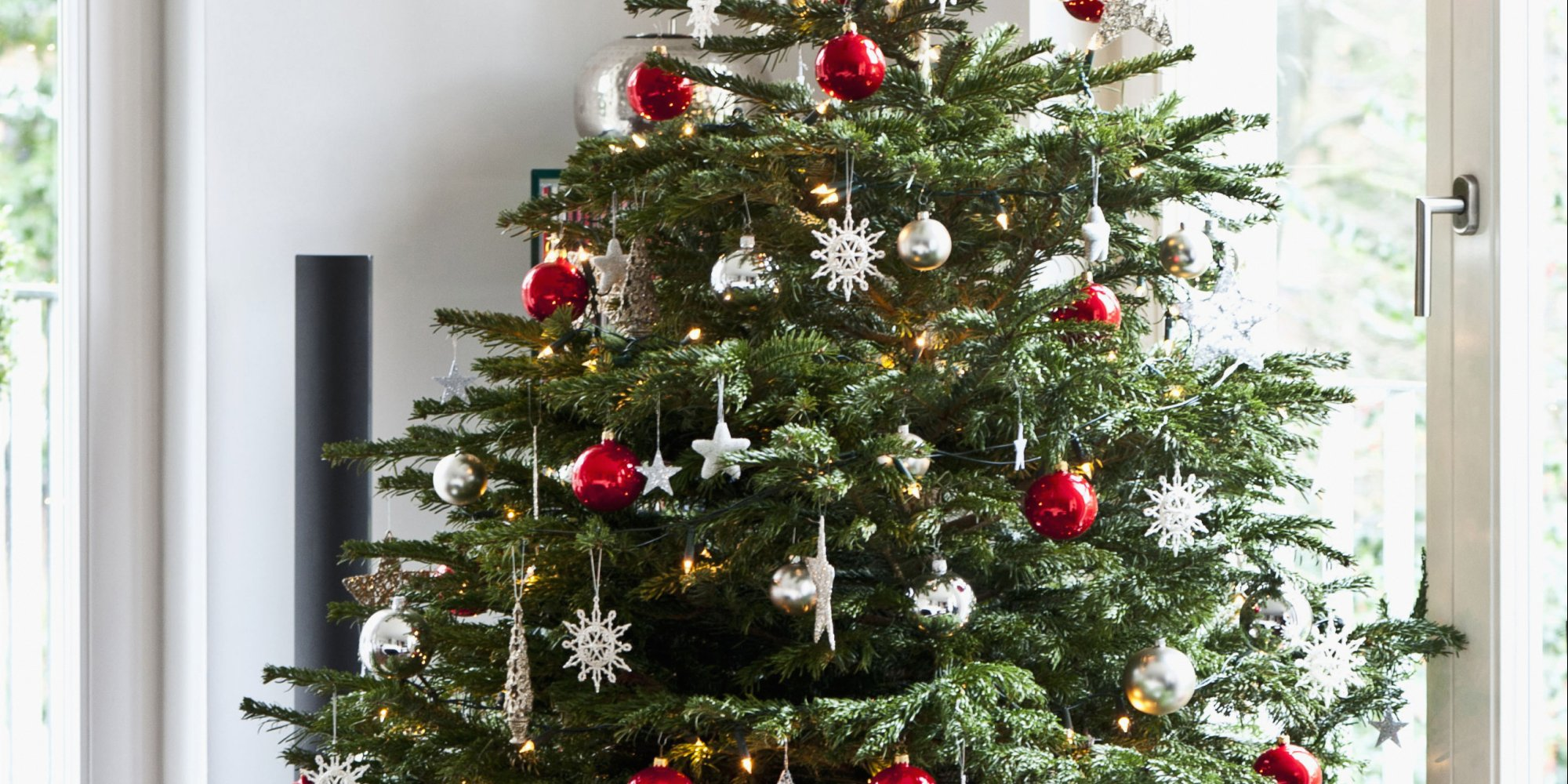 How to care for a real christmas tree huffpost How to hang garland on a christmas tree