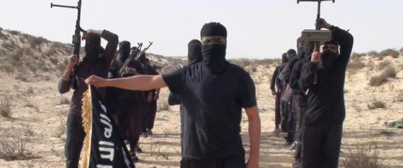 TERRORISM IN SINAI