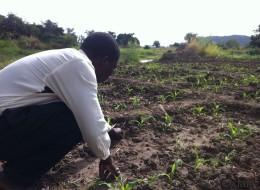 Leben im Klimawandel: Ephraim Nyondo aus Malawi