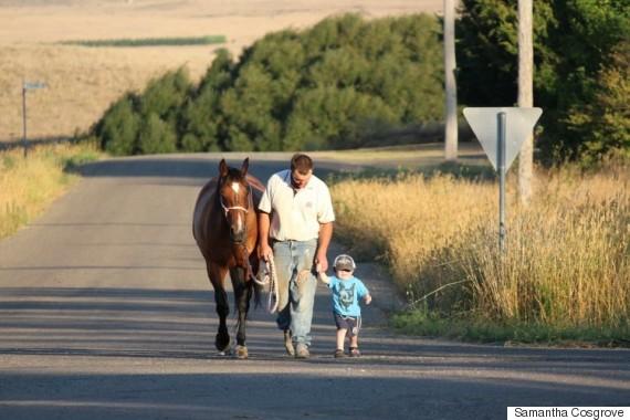 beau cosgrove horses taralga