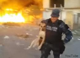 Policía héroe salva a perrita en incendio