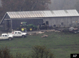 PHOTOS: 'It's Like Noah's Ark Wrecking Right Here In Zanesville, Ohio'