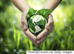 Educated Consumers Want Companies To Go Green