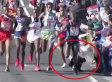 Perro hace perder carrera de 62 millas a atleta