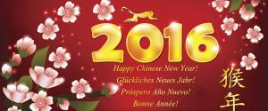 New Year China Monkey