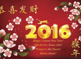 2016, année du singe