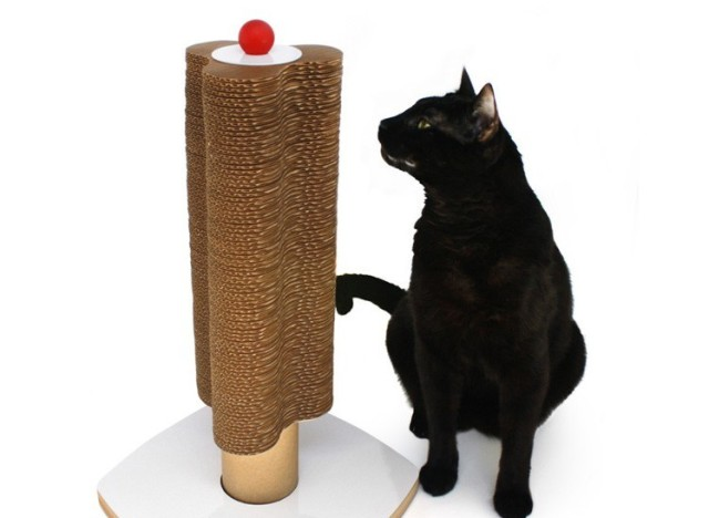 New Uses For Cardboard Diy Cat Scratching Post Huffpost Life