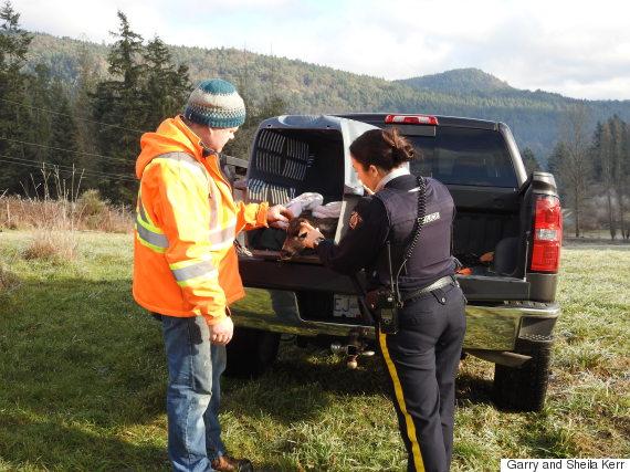 deer rescue duncan