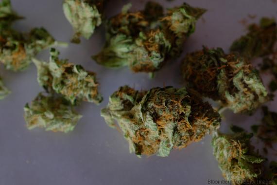 weed medicinal