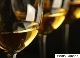 SAQ: mauvaise nouvelle pour les vignerons québécois (VIDÉO)