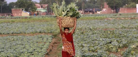n-INDIA-FARMERS-large570.jpg (570×238)