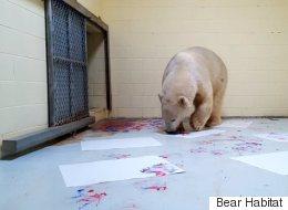 L'ours polaire qui se prend pour Picasso