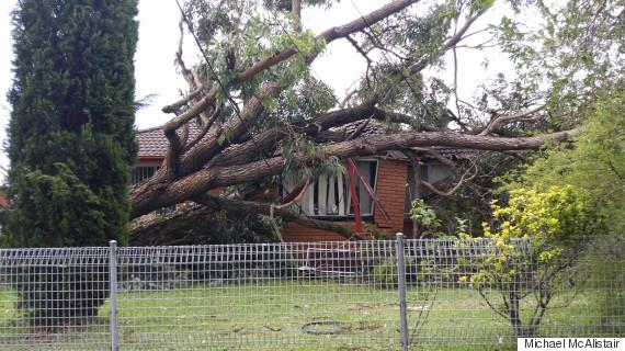 sydney storm damage