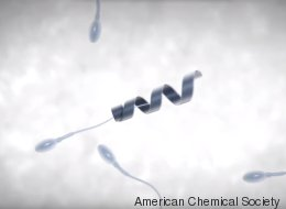 Le «robot spermatozoïde», la fécondation in vitro de demain? (VIDÉO)