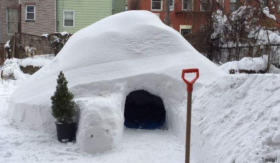 igloo airbnb brooklyn