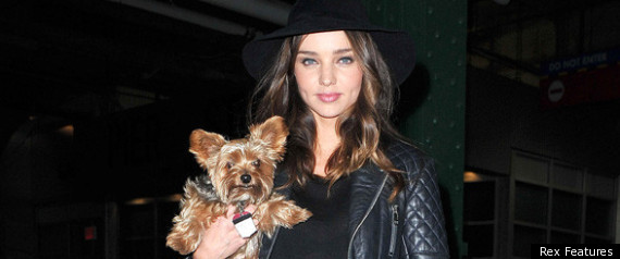 Miranda Kerr And Dog Frankie