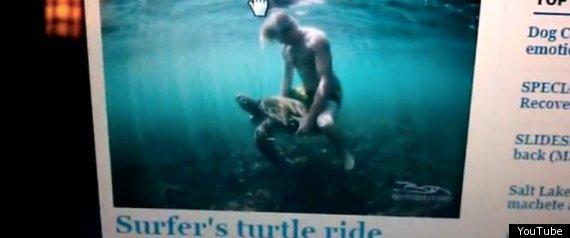 Jamie Obrien Rides Turtle