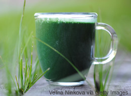 Spirulina: Deshalb sind diese Algen eine gute Nahrungsergänzung