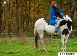A Horse's Guide to Leadership in Five Easy Steps