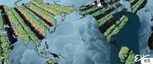 BLACK FUTURE CLIMATE CHANGE