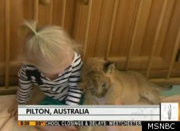 WATCH: Lion Cub And Toddler Play In Crib
