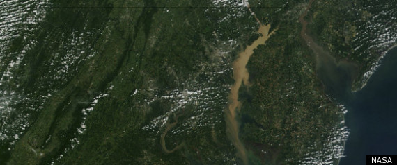 CHESAPEAKE BAY SEDIMENT