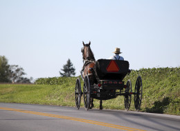 Amish Give Up Pricey Ontario, Head To P.E.I. Instead
