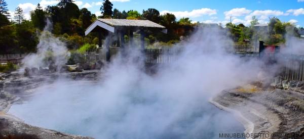 11 motivos por los que jamás deberías visitar Nueva Zelanda