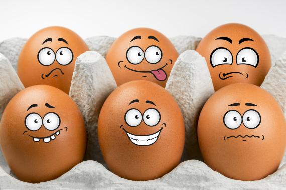 hate egg