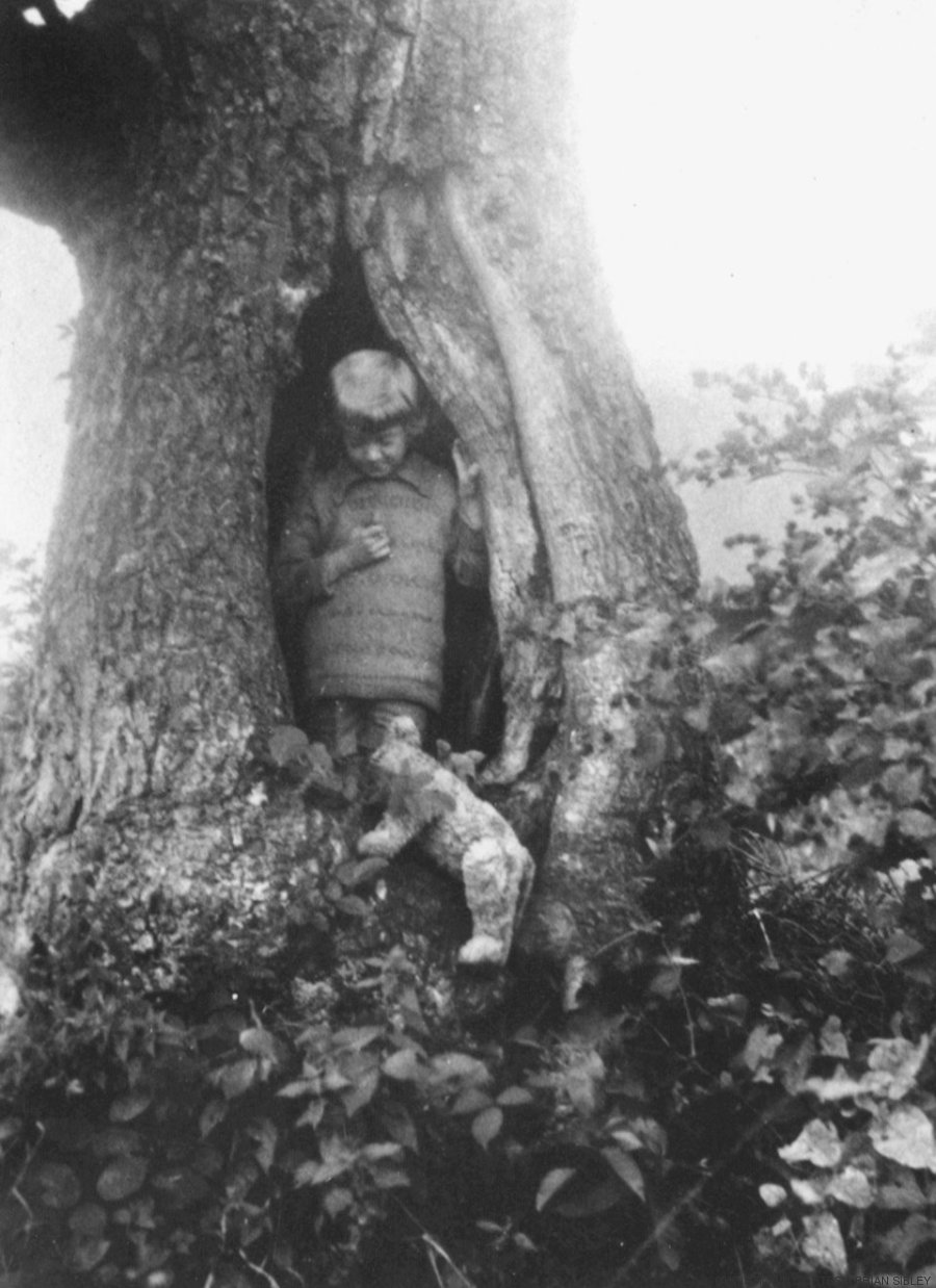 christopher robin com pooh_ leitão e roo