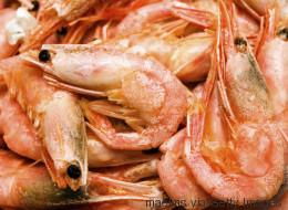 Pourquoi les crevettes deviennent roses à la cuisson