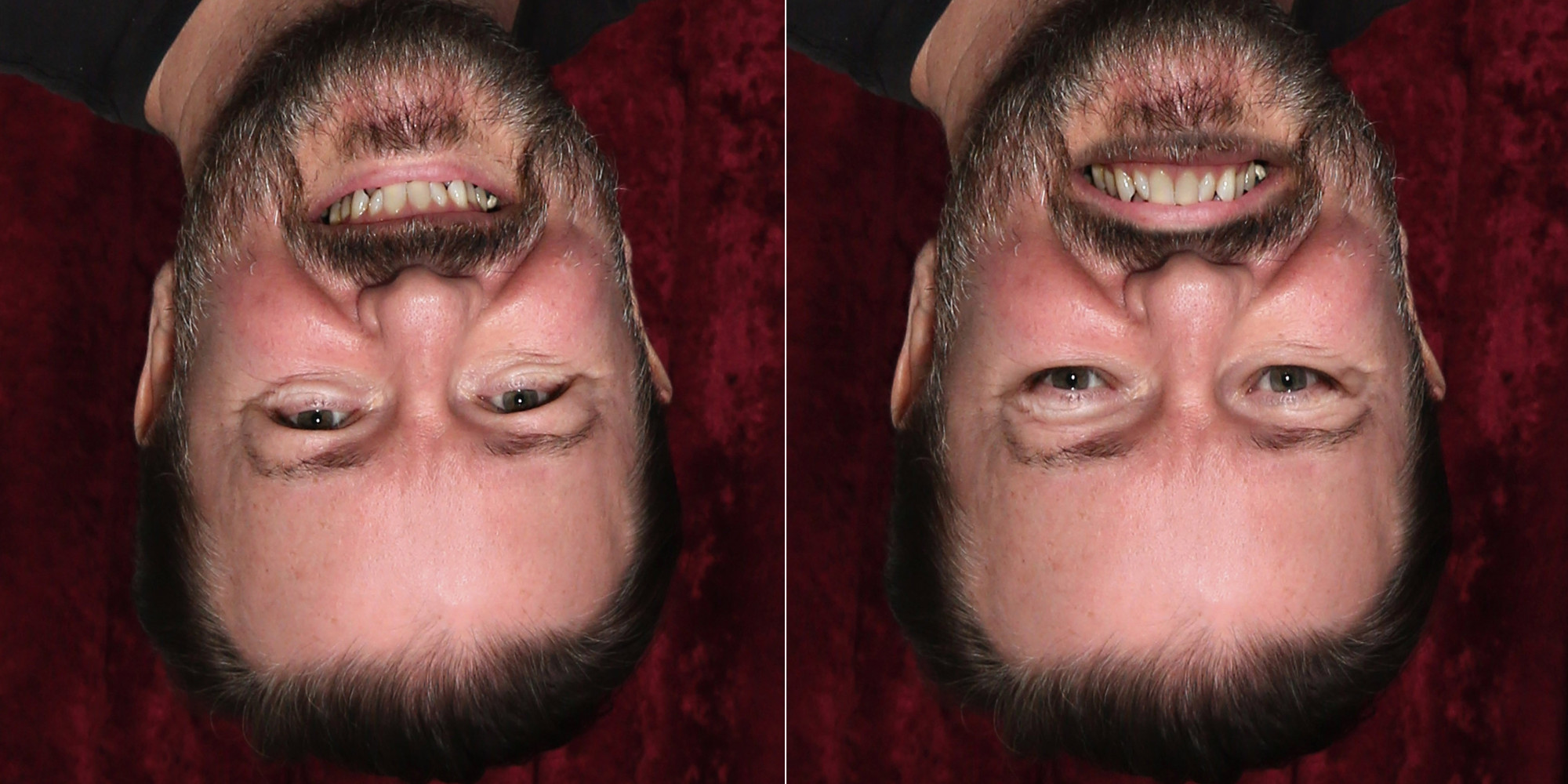 optical illusions face mind inversion blow gervais ricky huffpost