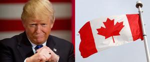 DONALD TRUMP CANADA