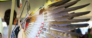 Aboriginal Feathers