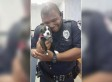 A Police Officer Called Out To An Animal Welfare Sanctuary Ended Up Falling In Love