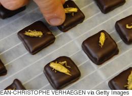 Cinq créations originales utilisant le chocolat (VIDÉO/PHOTOS)