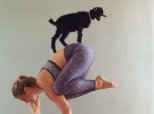 Just A Woman Doing Yoga With An Adorable Baby Goat